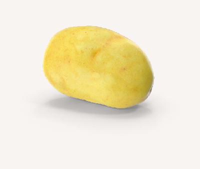 commercio di patate Siliotto